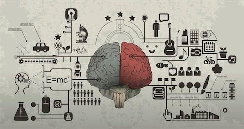 whole-brain-method-1